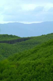 The Sila Mountains